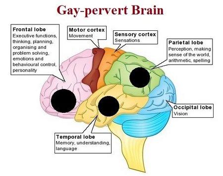 gaypervertbrain